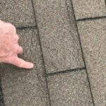 Wind Damage - Creased Shingles - Removes Granules - A Jenkins Inc